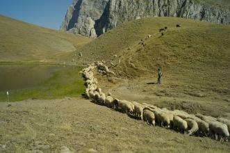Dhrakolimni, Mt Gamila