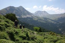 Vardhoúsia: emerging at Tselíkena col above the Skasméni sheepfold.