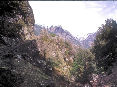 Agrafa: path above Tripa