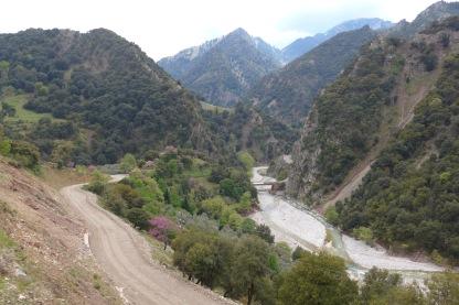 Bridge at Karvasarás