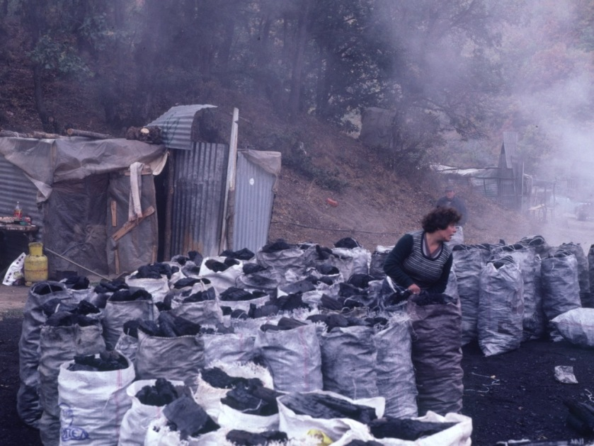 Charcoal burners/Prespa