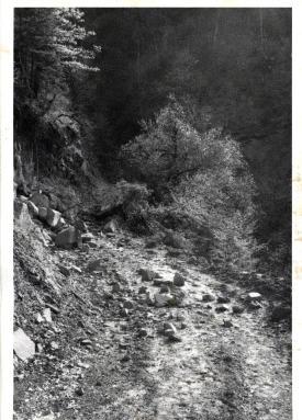 Road to Gardhíki